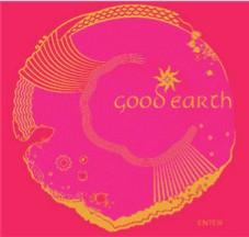 shop Delhi good earth