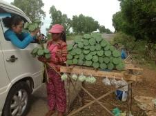 Entre Phnom Penh et Siem Reap