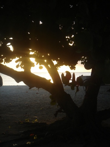 Ancon Playa
