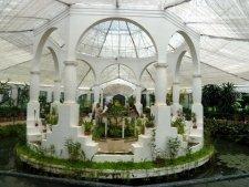jardin botanique 3