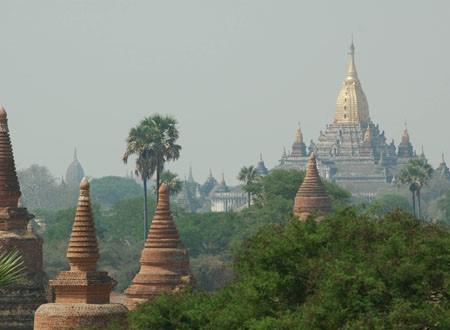 Bagan 8